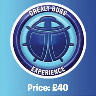 Bug Experience