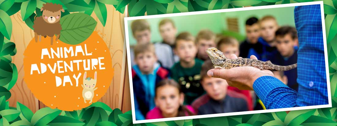 Animal Adventure Day at Crealy