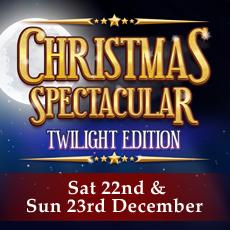 Christmas Spectacular Twilight Edition